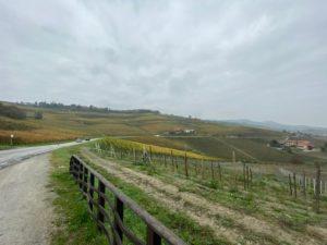 Die Hügel um Barolo
